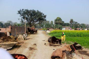 Bihar, Patna