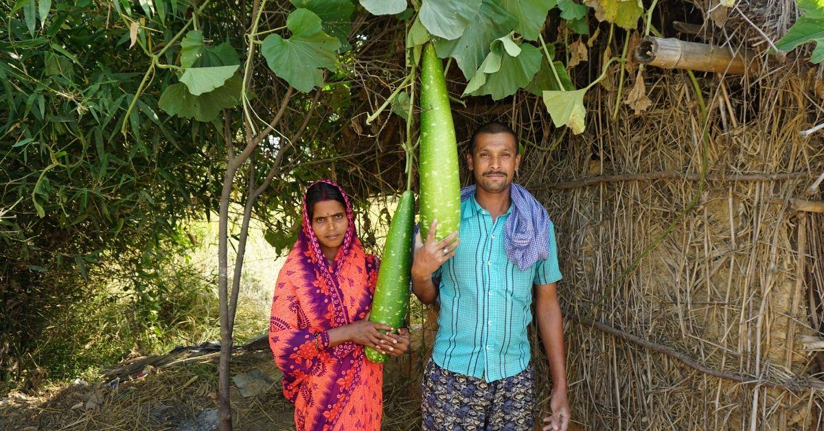 A Remote Bihar Village developed into an Organic Farming Revolution